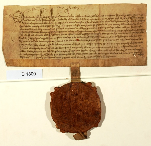 Irish letters patent (20 May 1467)